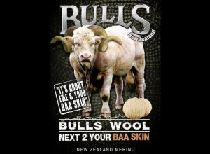 Wear-A-Bull Wool